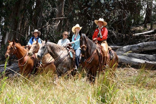 Piiholo Ranch horses