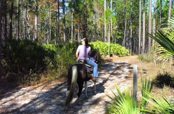 princess place horseback florida