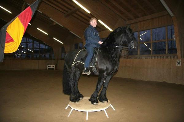 Ralf Schmitzer and horse on podium