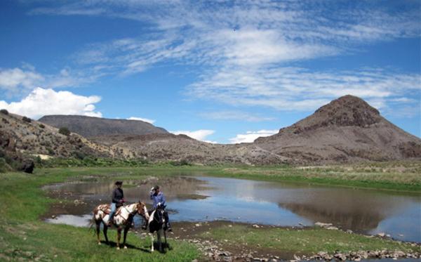 spotted horse ranch colorado ranch vacations