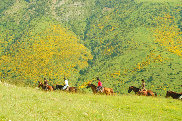 Catalonia Spain Smugglers Trail Mountain Horseback RIding