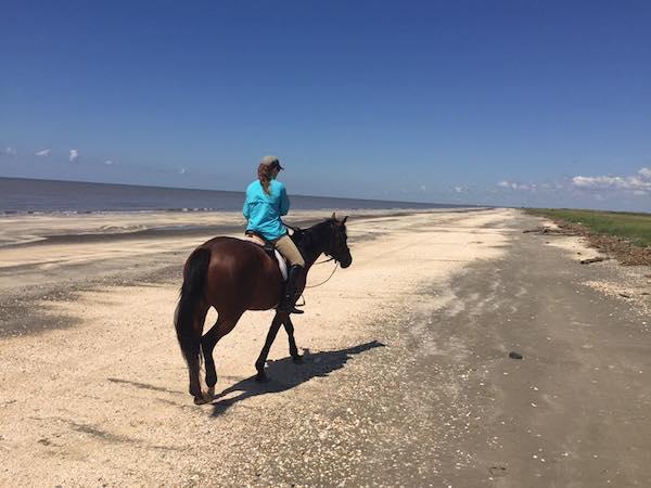 Sea Rim State Park horseback riding