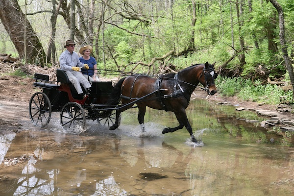 Shaker Village carriage drive