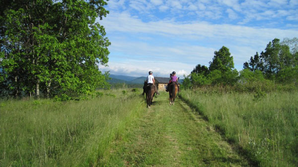 grassy trails horseback west virginia