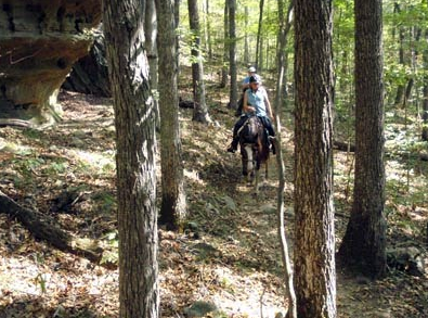 Shawnee National Forest illinois horseback riding