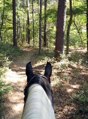 Shawnee National Forest illinois horse riding
