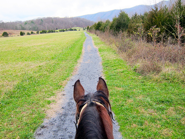 Shenandoah River State Park Horseback Riding