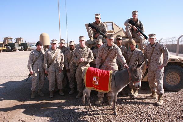 Smoke the Donkey Marines Camp