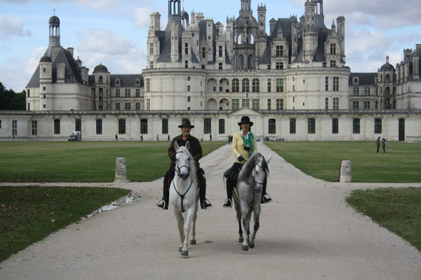 castle horse loire valley france