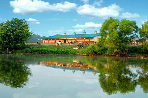 Southern Cross Guest Ranch stables