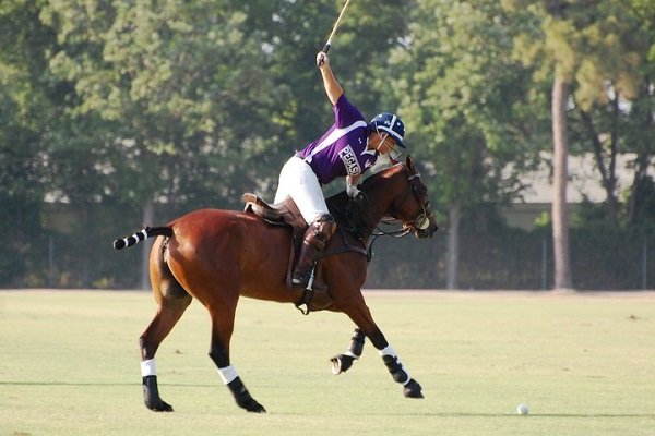 how to become a professional polo player
