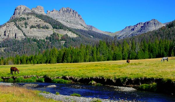 T Cross Ranch