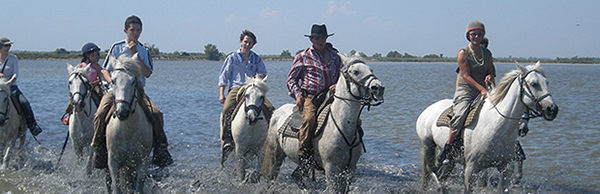 vaquero leads a trail ride on the beach in camargue france