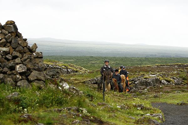 Thingvellir Viking Horse Trails Iceland
