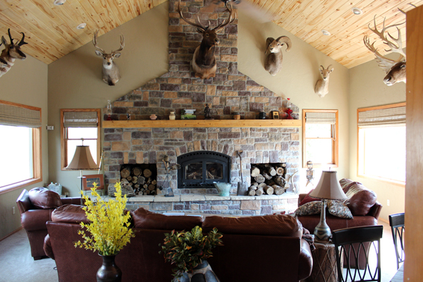 trophy room spotted horse ranch