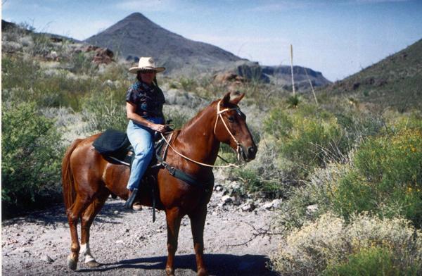 big bend state park horseback