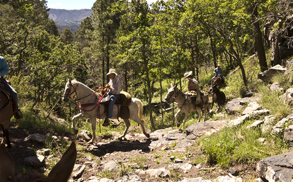 waterfall ride argentine trail on horseback new mexico