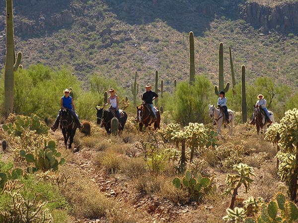 white stallion ranch arizona trail ride