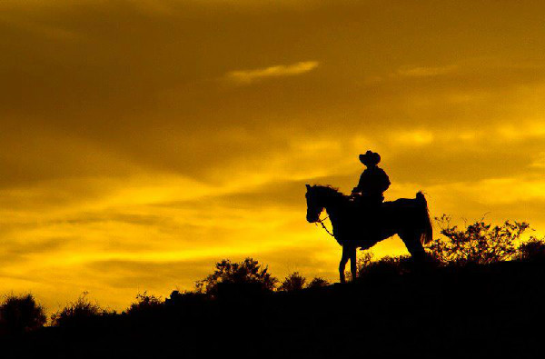 Wild West Horseback Adventures Las Vegas sunset