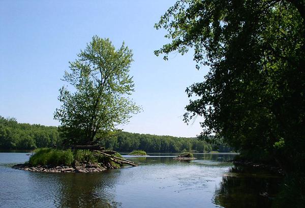 wild river state park minnesota river