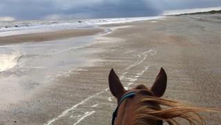 Horseback Riding on the Beach in North Carolina