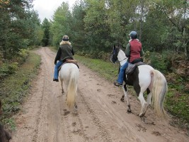 Horseback Riding at Otter Creek in New York's Adirondack Mountains