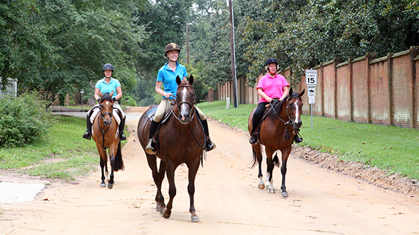 Aiken horse district horseback