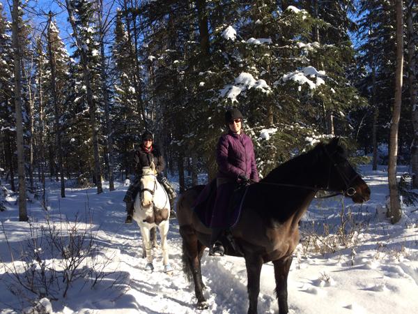 alaska horse trails anchorage