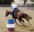 Alisal Guest Ranch Travel Deal