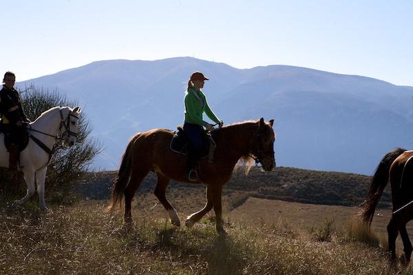 Alpujarras Spain horses