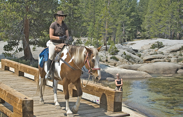 Crossing a bridge over the Tuolumne River horseback Yosemite National Park