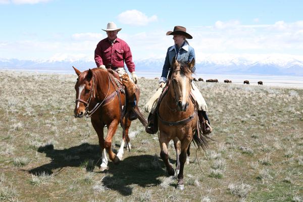 Antelope Island, Utah horse riding