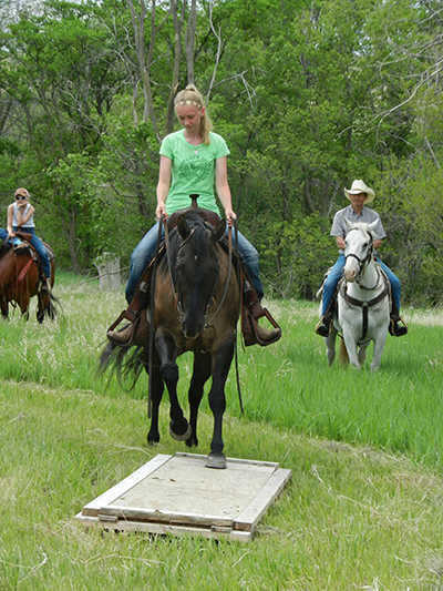 AQHA Trail Riding Challenge Equestrians