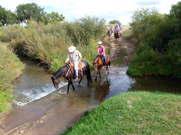 AQHA Trail Riding Challenge