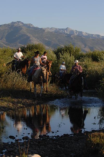 AQHA Trail Riding