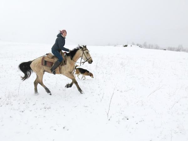 Armenia Cantering Horseback Ride