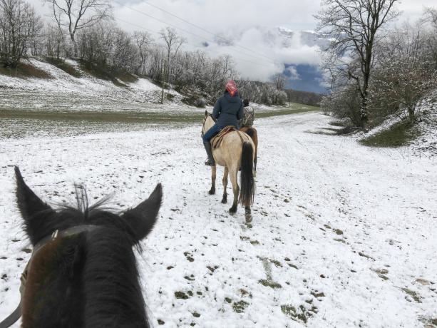 Armenia Horseback RIding