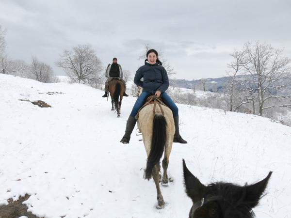 Horseback Riding Backwards