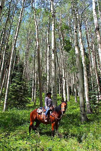 Rainbow Trout Ranch Aspen Horseback Riding