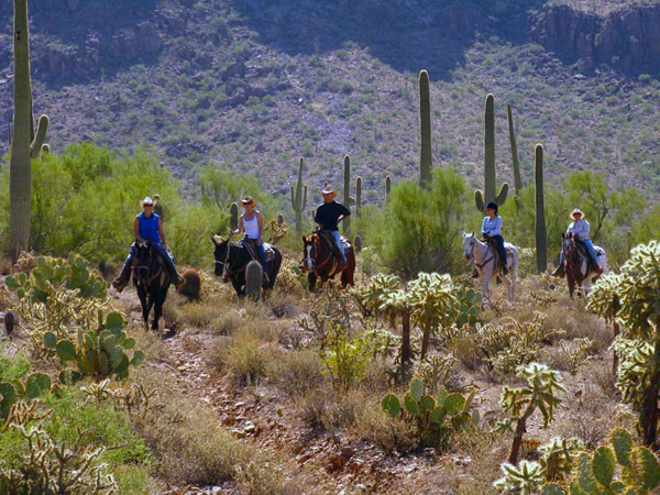 arizona horse riding- white stallion ranch