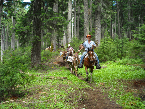 back country horsemen washington state