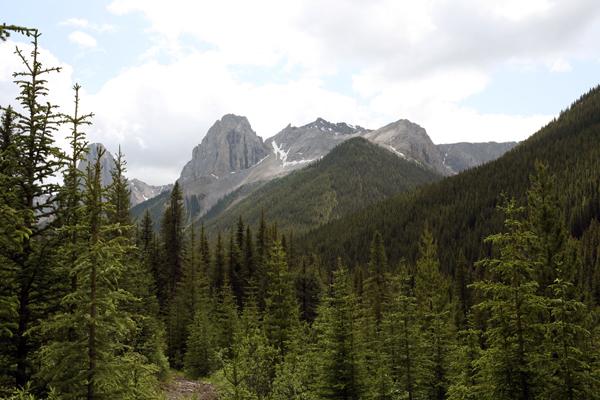 Banff trails