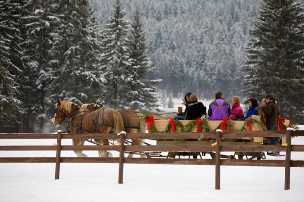 Bar w ranch montana christmas horse drawn sleigh