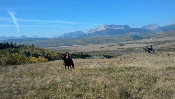 bear creek ranch montana dude ranches