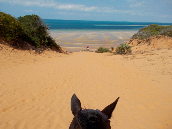 between the ears view from horseback of red dune of vilankulo bay
