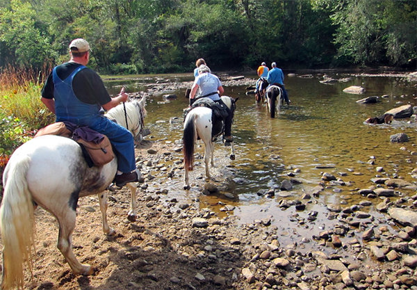 big south fork tennessee horseback riding river crossing