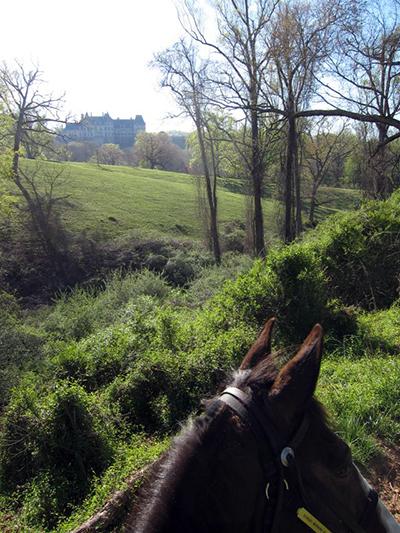 Carolina Horse Vacation at Biltmore and Leatherwood