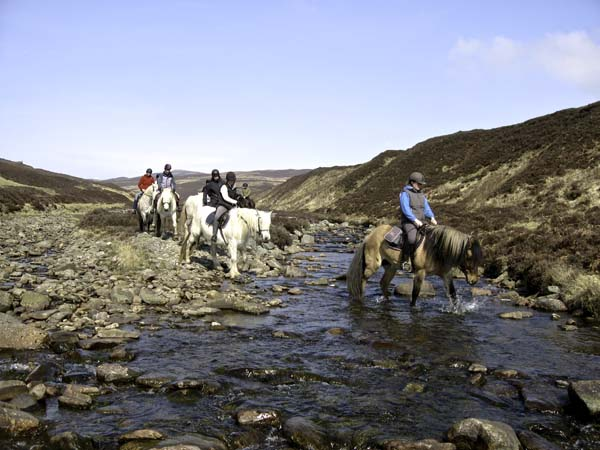 Blair Castle Pony Trekking River Crossing