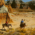 Blue Sky Sage Horseback Riding Wyoming