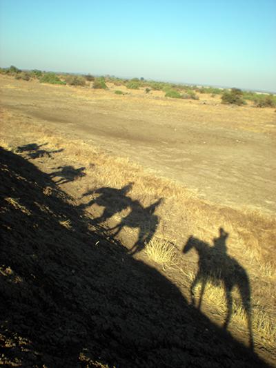 Botswana horse safari
